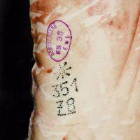 РАЙДЕКС — фарба для нанесення татуювання